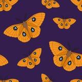 Όμορφο άνευ ραφής υπόβαθρο των πεταλούδων Απεικόνιση αποθεμάτων