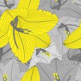 Όμορφο άνευ ραφής floral συρμένο χέρι floral υπόβαθρο με τα λουλούδια κρίνων Στοκ Φωτογραφία