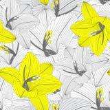 Όμορφο άνευ ραφής floral συρμένο χέρι floral υπόβαθρο με τα λουλούδια κρίνων Στοκ εικόνα με δικαίωμα ελεύθερης χρήσης