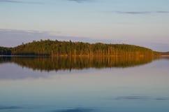 Όμορφο δάσος στην ακτή κόλπων Στοκ Εικόνα