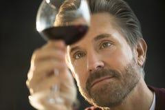 Όμορφο άτομο που εξετάζει το κόκκινο κρασί Στοκ Φωτογραφία
