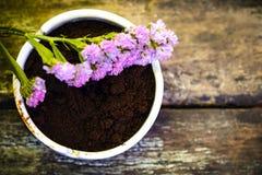 Όμορφο έδαφος λουλουδιών και καφέ στο εκλεκτής ποιότητας ξύλινο υπόβαθρο Στοκ φωτογραφία με δικαίωμα ελεύθερης χρήσης