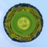 όμορφο αγροτικό καλοκαίρι τοπίων Στοκ Φωτογραφία