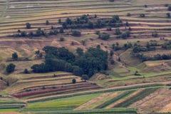 Όμορφο αγροτικό τοπίο με τα δέντρα και τους τομείς Στοκ Φωτογραφίες