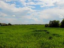 Όμορφο αγροτικό τοπίο στο ουκρανικό χωριό Στοκ Φωτογραφίες