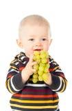 Όμορφο αγόρι παιδιών που τρώει τα σταφύλια Στοκ εικόνα με δικαίωμα ελεύθερης χρήσης