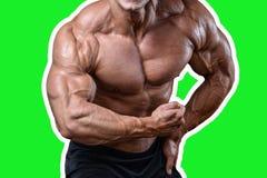 Όμορφο αθλητικό άτομο δύναμης στη διατροφή που εκπαιδεύει αντλώντας επάνω τους μυς Στοκ Φωτογραφίες