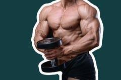 Όμορφο αθλητικό άτομο δύναμης στη διατροφή που εκπαιδεύει αντλώντας επάνω τους μυς Στοκ Φωτογραφία