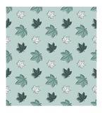 Όμορφο απλό άνευ ραφής σχέδιο Φύλλα σφενδάμου φθινοπώρου κατά τρόπο χαοτικό Γαλαζοπράσινα χρώματα Στοκ Εικόνες