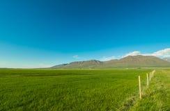 Όμορφο απλό τοπίο με τον πράσινους τομέα και τα βουνά Στοκ εικόνες με δικαίωμα ελεύθερης χρήσης