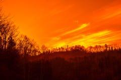 Όμορφο δασικό ηλιοβασίλεμα Στοκ Φωτογραφίες