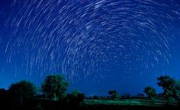 Όμορφο αστέρι Στοκ Εικόνα