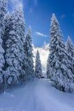 όμορφο βουνό τοπίων Στοκ Φωτογραφίες