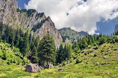 όμορφο βουνό τοπίων στοκ εικόνα