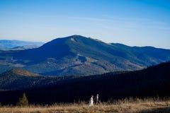 Όμορφο γαμήλιο ζεύγος που περπατά στον τομέα μεγάλο βουνό τοπίων περιπέτειας θαυμάσιο Στοκ Εικόνες
