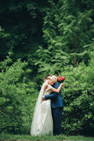 Όμορφο γαμήλιο ζεύγος στο πάρκο Φιλί και αγκάλιασμα μεταξύ τους Στοκ φωτογραφίες με δικαίωμα ελεύθερης χρήσης