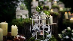Όμορφο γαμήλιο ντεκόρ με τα κεριά, κούτσουρα σημύδων απόθεμα βίντεο