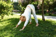 Όμορφο γυναικών θερινό χαμόγελο φύσης πάρκων αθλητικής γυμναστικής πράσινο Στοκ Εικόνα