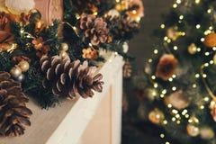 όμορφο διάνυσμα δέντρων απεικόνισης Χριστουγέννων ανασκόπησης Στοκ Φωτογραφία