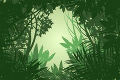 Όμορφο διάνυσμα σκηνής τροπικών δασών άποψης Στοκ Εικόνα