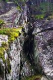 Όμορφο δύσκολο φαράγγι μεταξύ της κωνοφόρης δασικής Ουκρανίας, τα Καρπάθια βουνά στοκ εικόνες με δικαίωμα ελεύθερης χρήσης