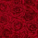 Όμορφο εκλεκτής ποιότητας άνευ ραφής σχέδιο με τα κόκκινα τριαντάφυλλα Στοκ Εικόνες