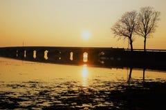 Όμορφο ελατήριο στη Λιθουανία στοκ φωτογραφίες με δικαίωμα ελεύθερης χρήσης