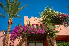 Όμορφο εξοχικό σπίτι με τα λουλούδια Στοκ Φωτογραφίες