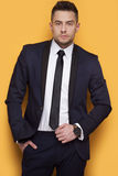 Όμορφο επιχειρησιακό άτομο σε ένα επιχειρησιακό κοστούμι Στοκ Εικόνες