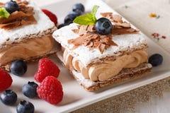 Όμορφο επιδόρπιο: κέικ σοκολάτας με την κρέμα καφέ, σμέουρα Στοκ Εικόνες