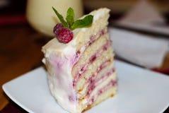 Όμορφο, εύγευστο κέικ με τα σμέουρα στοκ φωτογραφίες