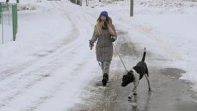 Όμορφο εύθυμο κορίτσι που περπατά το δείκτη σκυλιών στο χιόνι απόθεμα βίντεο