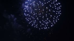όμορφο ζωηρόχρωμο πυροτέχ&nu Εορτασμός απόθεμα βίντεο