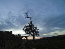 Όμορφο ηλιοβασίλεμα στην Αλγερία στοκ εικόνες