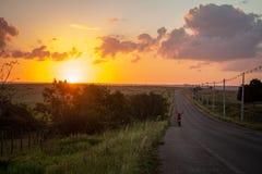 Όμορφο ηλιοβασίλεμα στον τομέα Τα σύνολα ήλιων στον ορίζοντα Ο ουρανός είναι με τα χρωματισμένα χρυσά χρώματα στοκ φωτογραφίες
