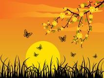 όμορφο ηλιοβασίλεμα διανυσματική απεικόνιση