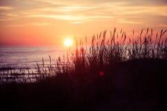 Όμορφο ηλιοβασίλεμα πίσω από τη χλόη αμμόλοφων Στοκ φωτογραφία με δικαίωμα ελεύθερης χρήσης