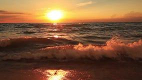 Όμορφο ηλιοβασίλεμα σε μια τροπική αμμώδη παραλία απόθεμα βίντεο