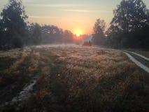 Όμορφο ηλιοβασίλεμα σε 6 AM στον τομέα Στοκ Εικόνα