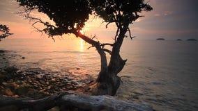 Όμορφο ηλιοβασίλεμα στην ακτή ενός τροπικού νησιού Koh Chang φιλμ μικρού μήκους