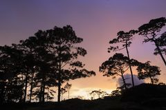 Όμορφο ηλιοβασίλεμα λυκόφατος στην εθνική συντήρηση βιοποικιλότητας στοκ φωτογραφίες
