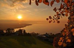 Όμορφο ηλιοβασίλεμα φθινοπώρου με τα κόκκινα φύλλα πέρα από τη λίμνη Bodensee Constance Στοκ Εικόνες