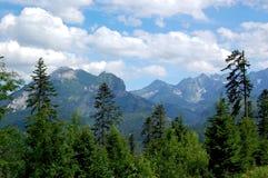 Όμορφο ηλιόλουστο τοπίο βουνών στις διακοπές η ημέρα στοκ εικόνες