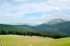 Όμορφο ηλιόλουστο τοπίο βουνών στις διακοπές η ημέρα στοκ φωτογραφίες