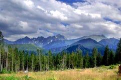 Όμορφο ηλιόλουστο τοπίο βουνών στις διακοπές η ημέρα στοκ εικόνα με δικαίωμα ελεύθερης χρήσης