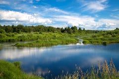 Όμορφο θερινό αγροτικό τοπίο με έναν ποταμό Στοκ Εικόνες