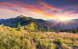Όμορφο θερινό τοπίο στα βουνά. Στοκ Εικόνες