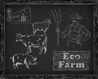 Όμορφο διάγραμμα, χοιρινό κρέας, αρνί και αγρότης βόειου κρέατος Στοκ εικόνες με δικαίωμα ελεύθερης χρήσης