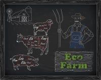 Όμορφο διάγραμμα, χοιρινό κρέας, αρνί και αγρότης βόειου κρέατος Στοκ Εικόνες