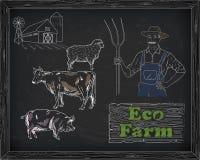 Όμορφο διάγραμμα, χοιρινό κρέας, αρνί και αγρότης βόειου κρέατος Στοκ φωτογραφίες με δικαίωμα ελεύθερης χρήσης